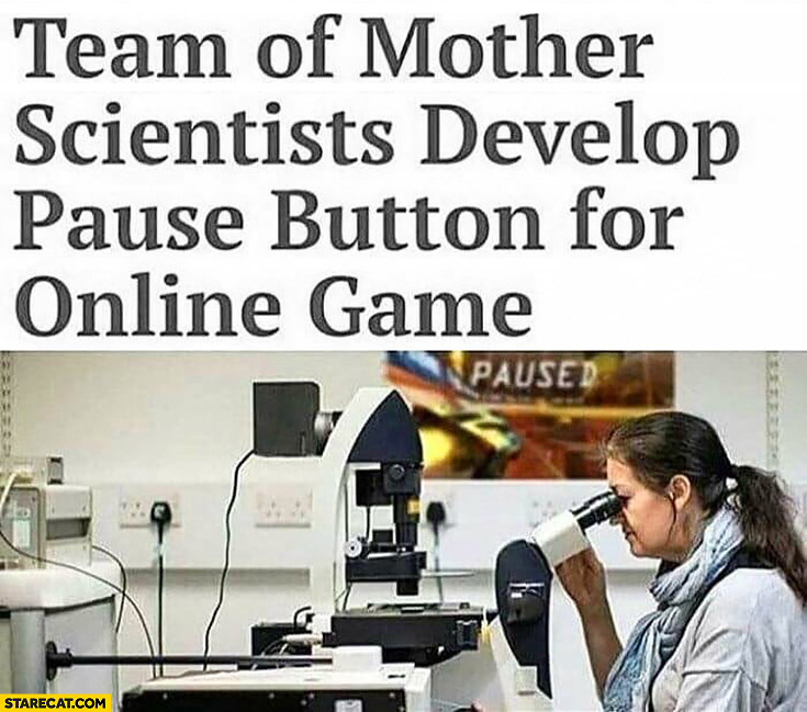Team of mother scientists develop pause button for online game
