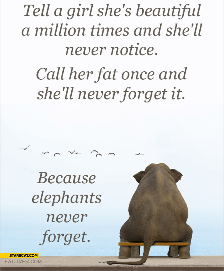 Tell girl she's beautiful never notice call her fat never forget it because elephants never forget