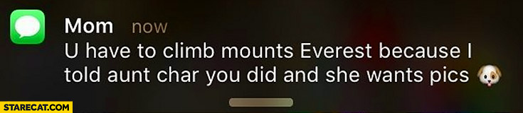 """Text from mom: """"you have to climb Mount Everest, because I told aunt you did and she want pics"""""""