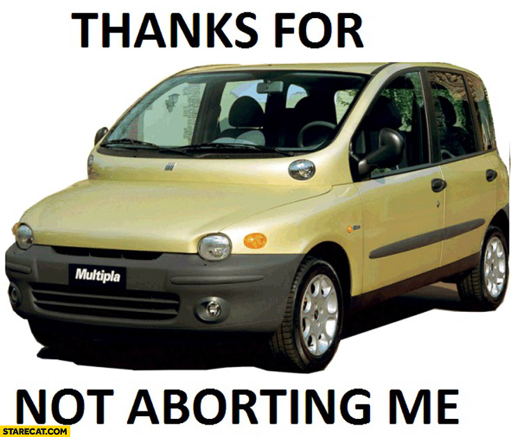 Thanks for not aborting me Fiat Multipla
