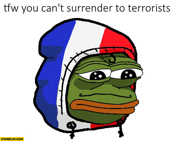That feeling when you can't surrender to terrorists France sad frog