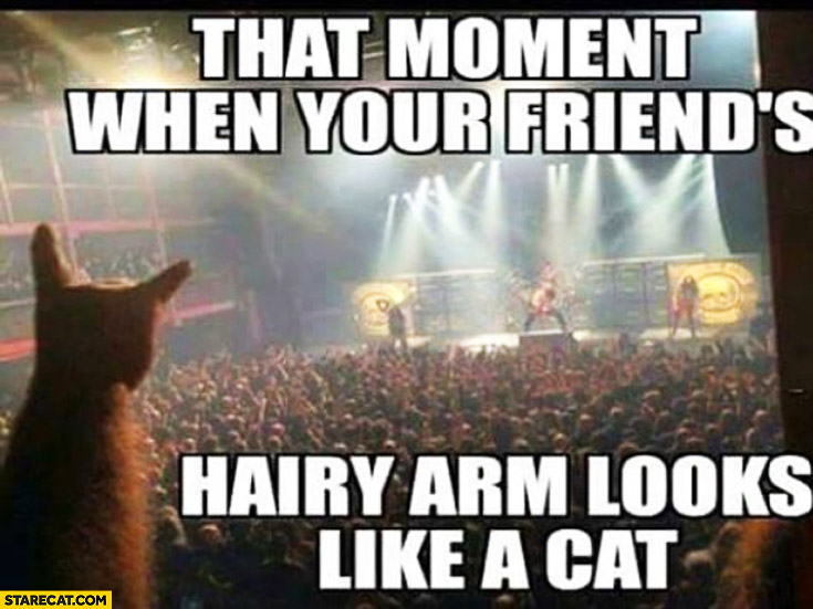 That moment when your friends hairy arm looks like a cat