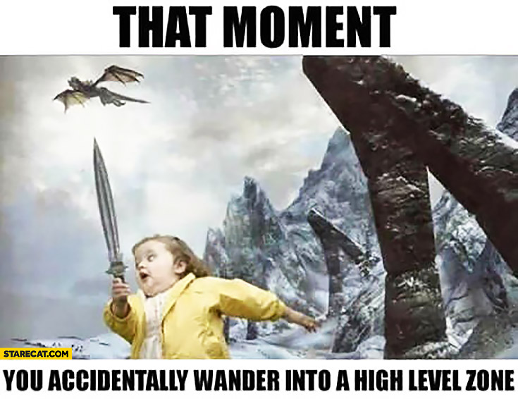 That moment you accidentally wander into a high level zone Skyrim