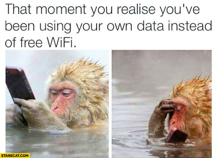 That moment you realise you've been using your own data instead of free WiFi monkey with a phone