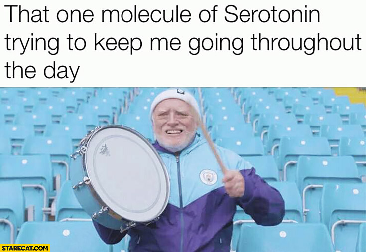 That one molecule of serotonin trying to keep me going throughout the day Harold cheering up