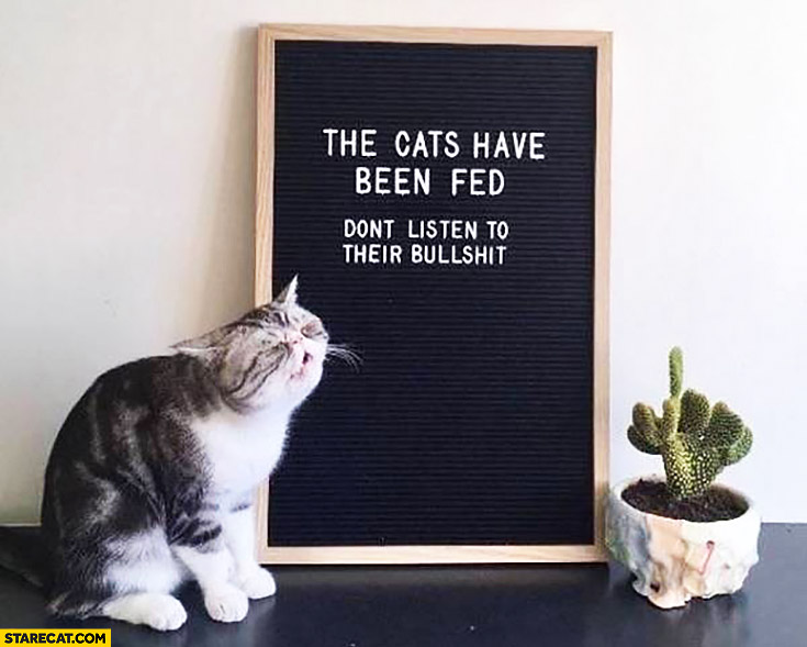 The cats have been fed don't listen to their bullshit quote