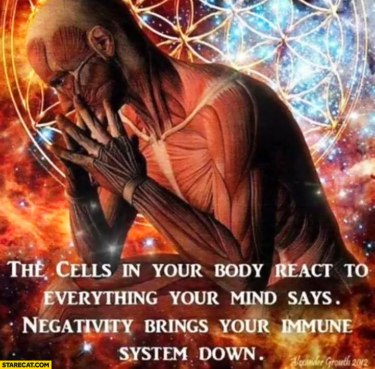 The cells in your body react to everything your mind says, negativity brings your immune system down