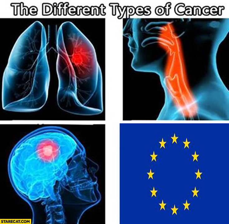 The different types of cancer EU European Union
