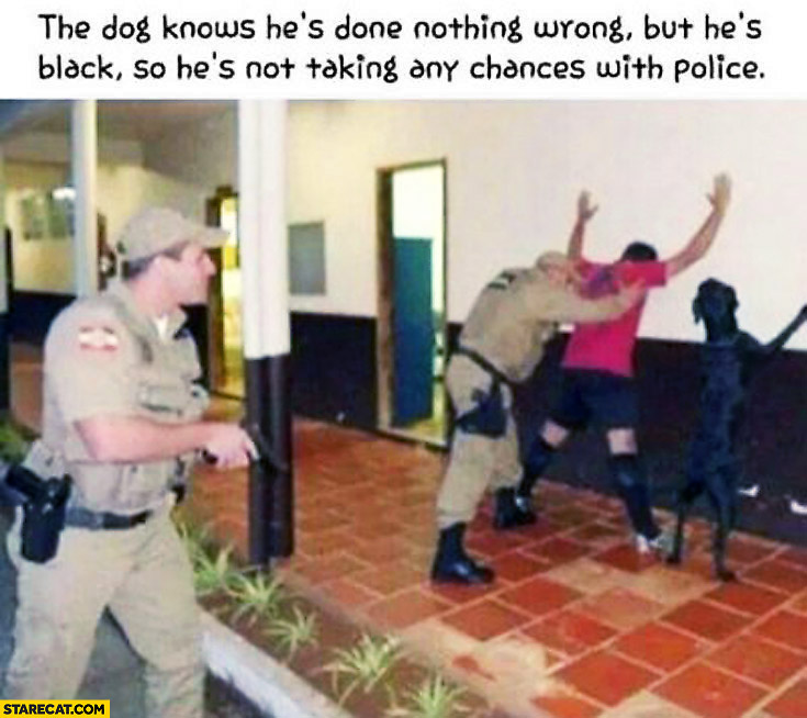 The dog knows he's done nothing wrong but he's black so he's not taking any chances with the police