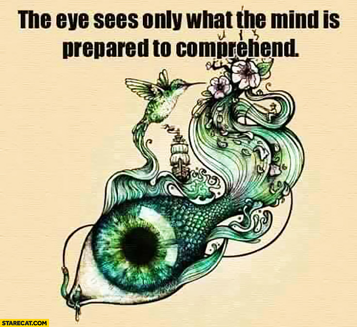 The eye sees only what the mind is prepared to comprehend. Inspiring quote
