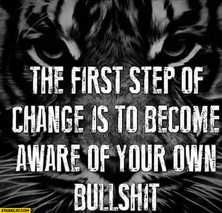 The first step of change is to become aware of your own bullshit quote