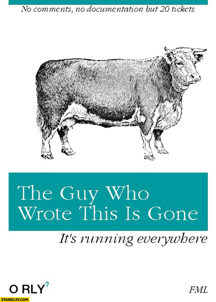 The guy who wrote this is gone, it's running everywhere, no comments, no documentation, but 20 tickets. O'Rly book