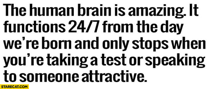 The human brain is amazing – it functions 24/7 from the day we're born and only stops when you're taking a test or speaking to someone attractive