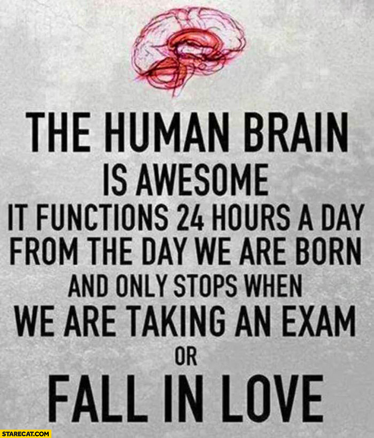 The human brain is awesome it functions 24 hours a day from the day we are born and only stops when we are taking an exam or fall in love