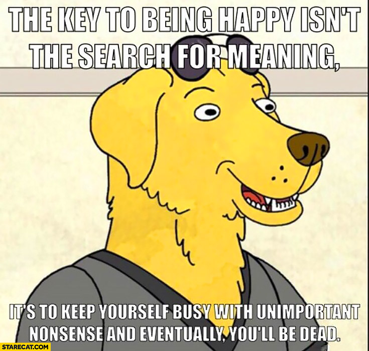 The key of being happy isn't the search for meaning, it's to keep yourfels busy with unimportant nonsense and eventually you'll be dead