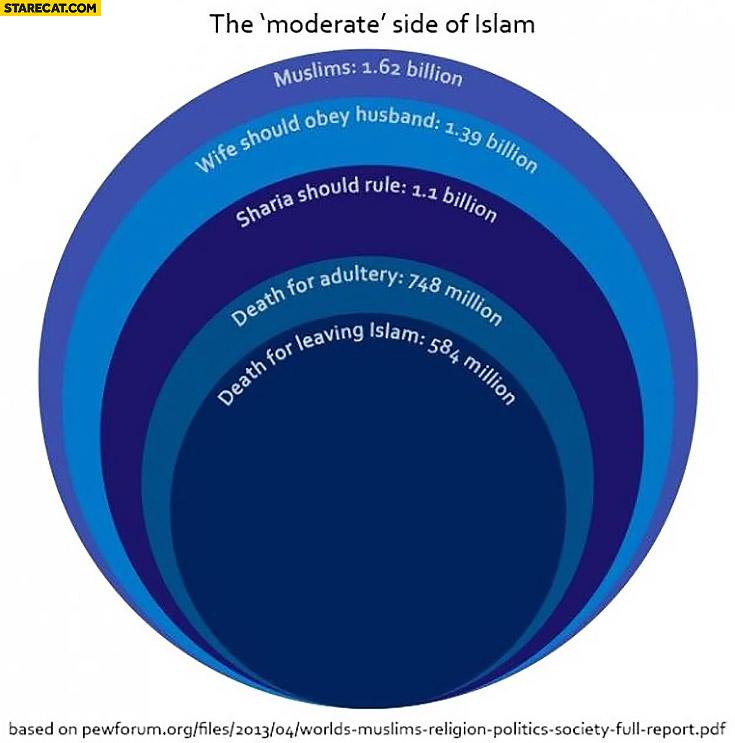 "The ""moderate"" side of Islam graph muslims: wife should obey husband, Sharia should rule, death for adultery, death for leaving islam"