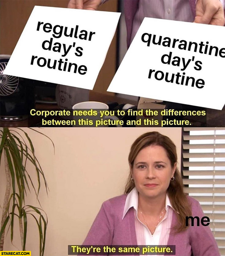 The Office regular days routine, quarantine days routine – they're the same picture coronavirus memes Covid-19