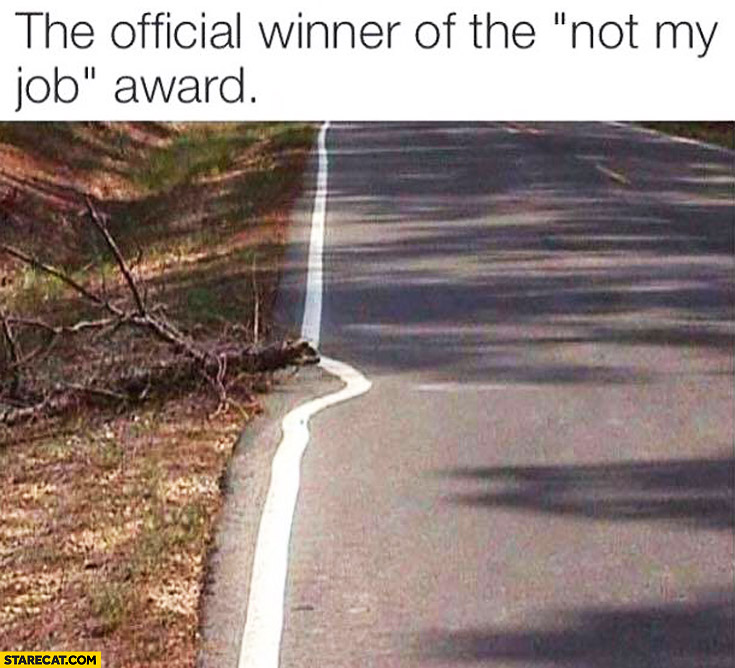 "The official winner of the ""not my job"" award line along the road fallen tree fail"