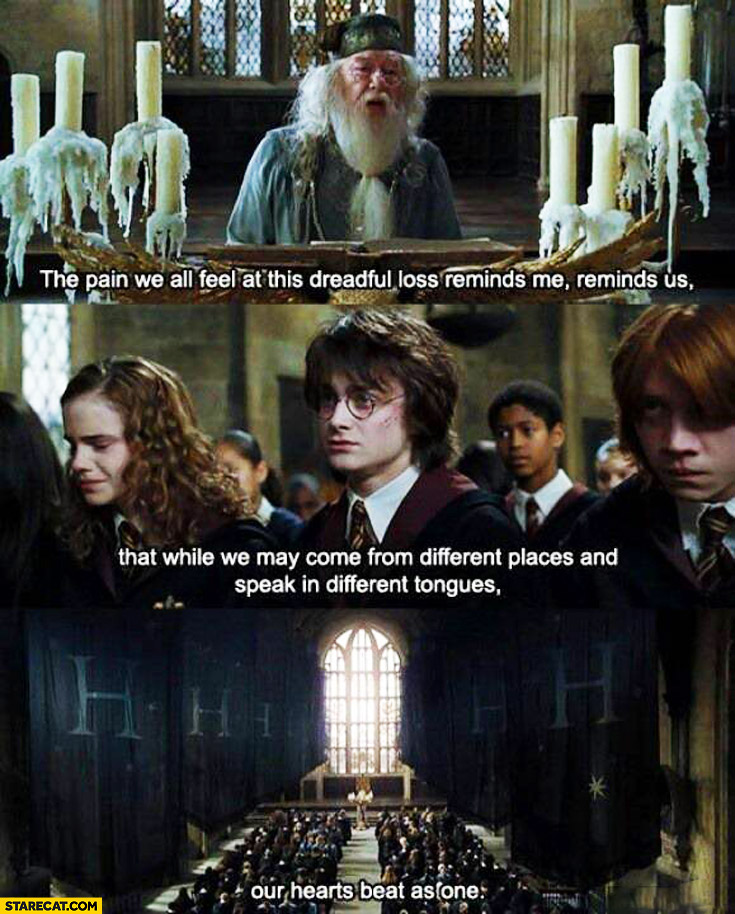 The pain we all feel at this dreadful loss reminds me that while we may come from different places and speak in different tongues our hearts beat as one Harry Potter