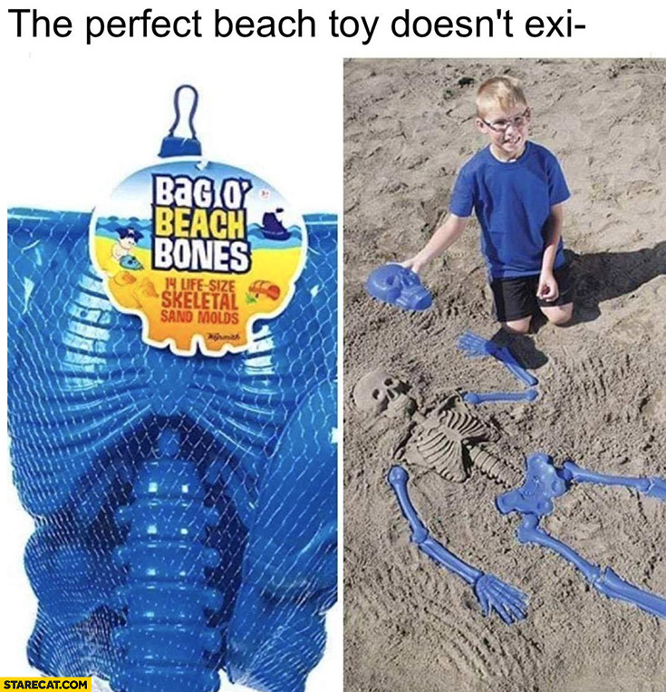The perfect beach toy doesn't exist, wait: bag o beach bones skeletal sand molds