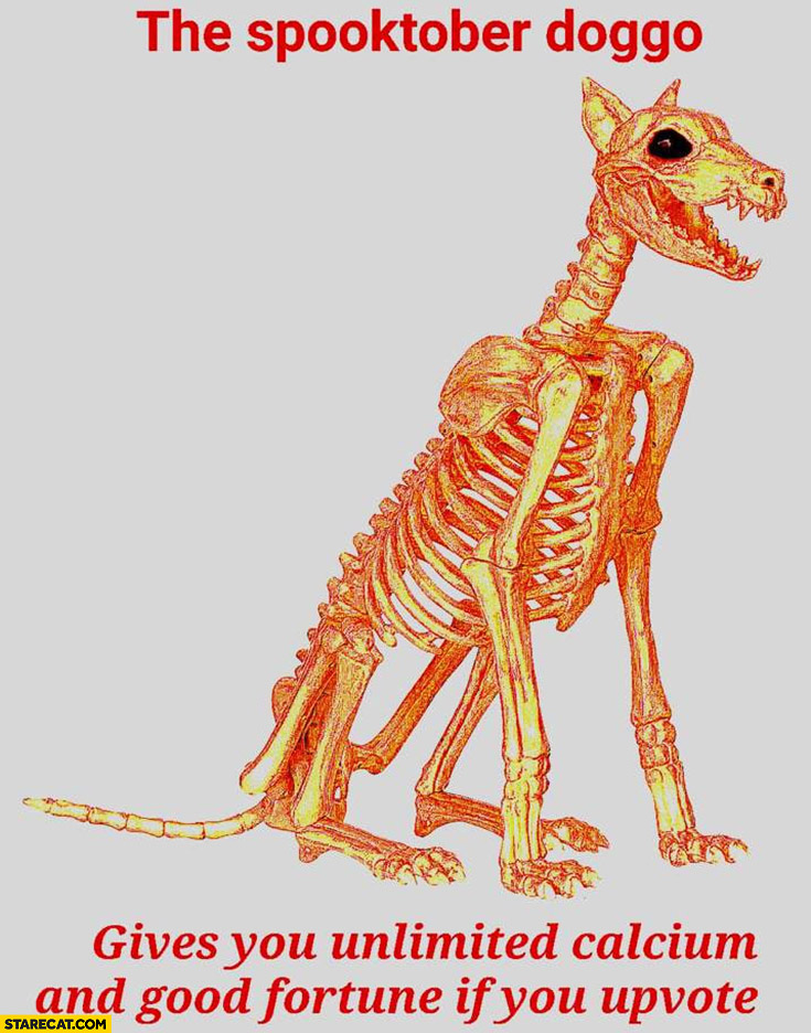 The spooktober doggo gives you unlimited calcium and good fortune if you upvote