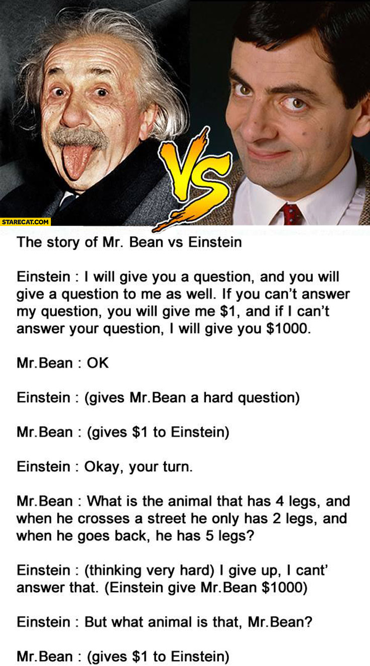 The story off Mr. Bean vs Einstein what animal is that?