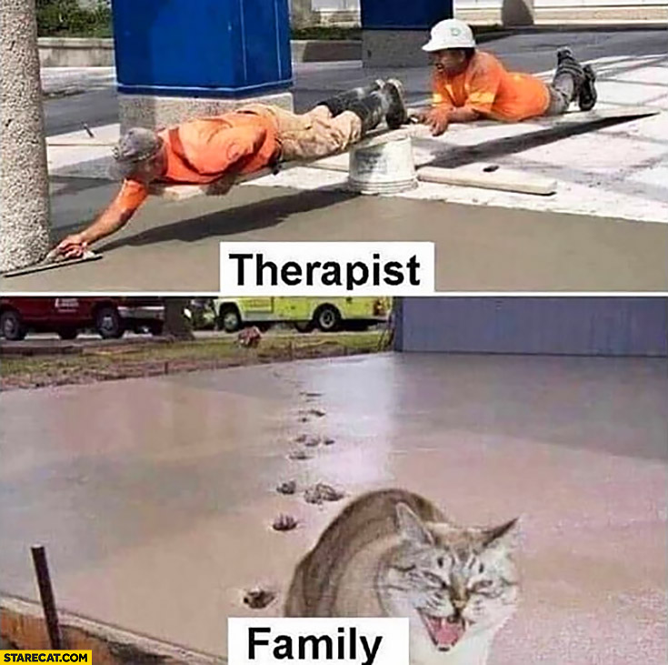 Therapist fixing me vs family mad cat messing everything up