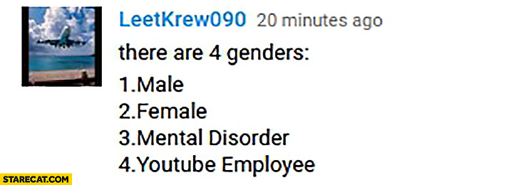 There are 4 genders: male, female, mental disorder, youtube employee