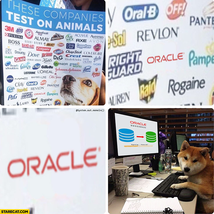 These companies test on animals Oracle dog programming database