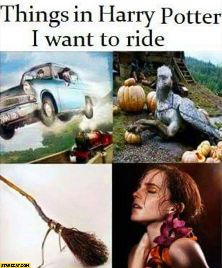 Things in Harry Potter I want to ride