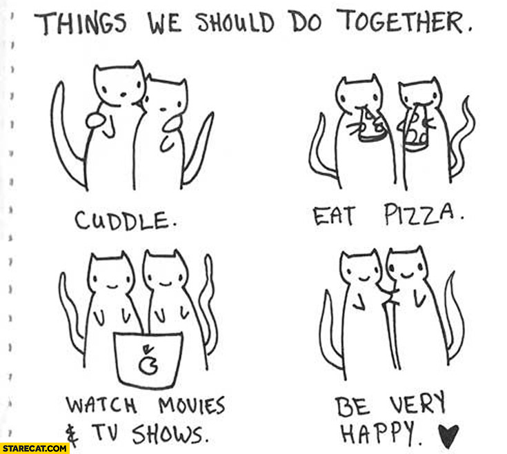 Things we should do together cats