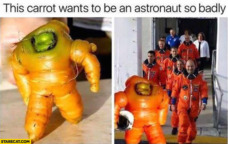 This carrot wants to be an astronaut so badly