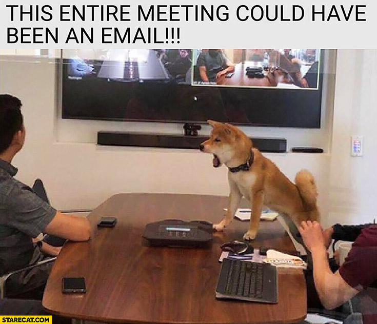 This entire meeting could have been an email angry dog