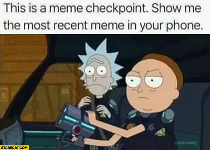 This is a meme checkpoint, show me the most recent meme in your phone