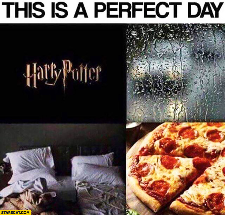 This is a perfect day: Harry Potter, rain, bed, pizza