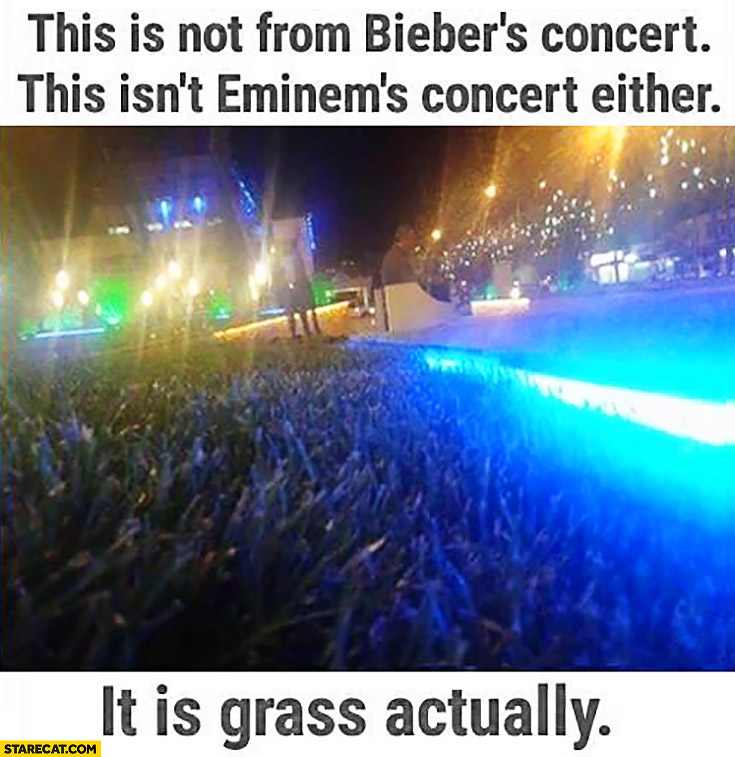 This is not from Bieber's concert, this isn't Eminem's concert either. It is grass actually