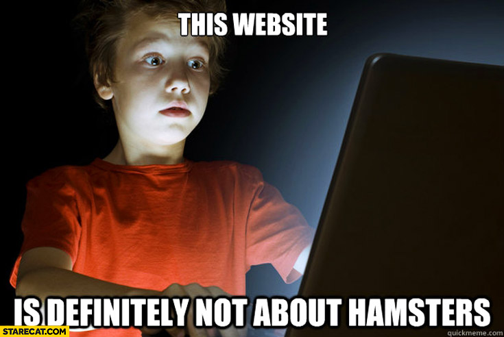 This website is definitely not about hamsters scared kid