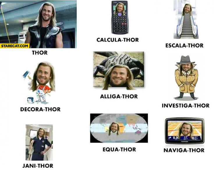 Thor different forms memes calculathor escalathor decorathor