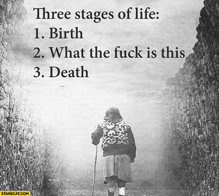 Three stages of life: 1. birth, 2. what the fuck is this, 3. death