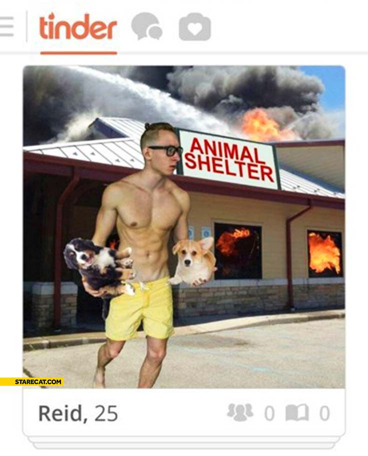 Tinder animal shelter rescue hero
