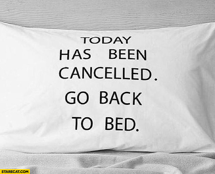 Today has been cancelled go back to bed pillow