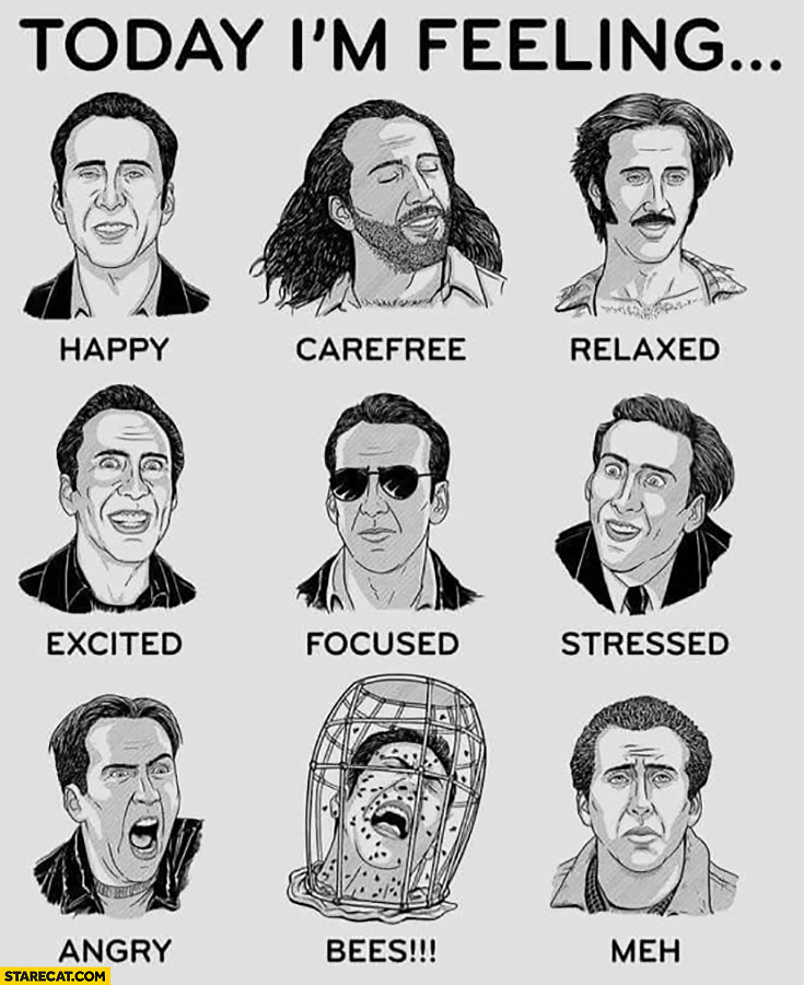 Today I'm feeling Nicolas Cage faces expressions: happy, carefree, relaxed, excited, focused, stressed, angry, bees, meh