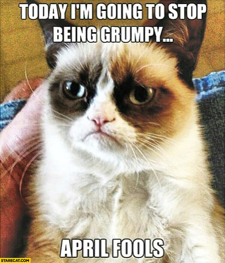 Today I'm going to stop being Grumpy April fools Grumpy Cat
