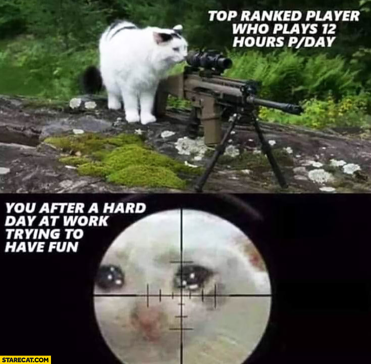 Top ranked players who plays 12 hours per day vs you after a hard day at work trying to have fun cats