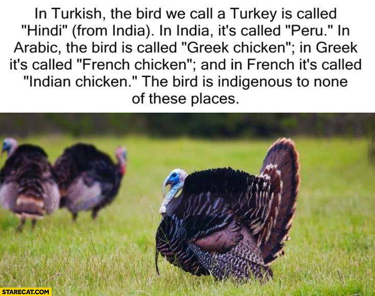 Turkey in Turkish called Hindi in India called Peru
