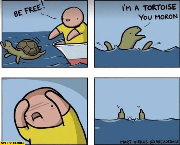 Turtle, be free, I'm a tortoise you moron comic