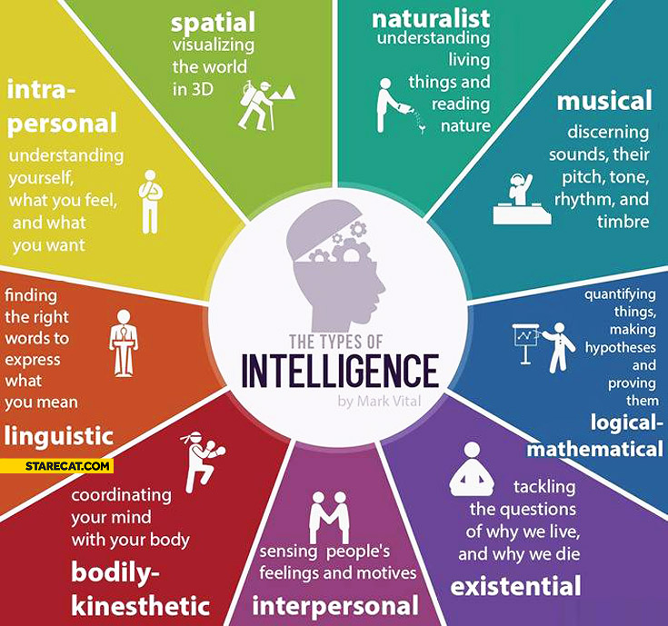 Types of intelligence by Mark Vital