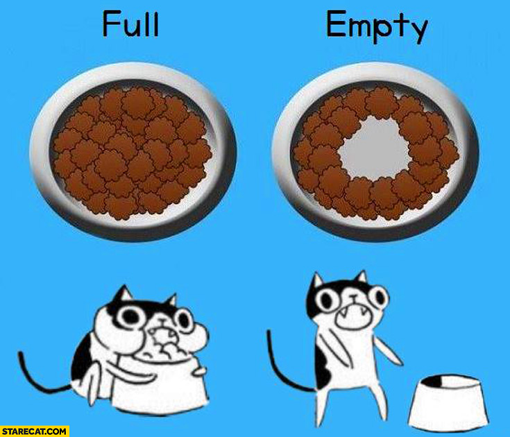 Typical cat full empty food bowl
