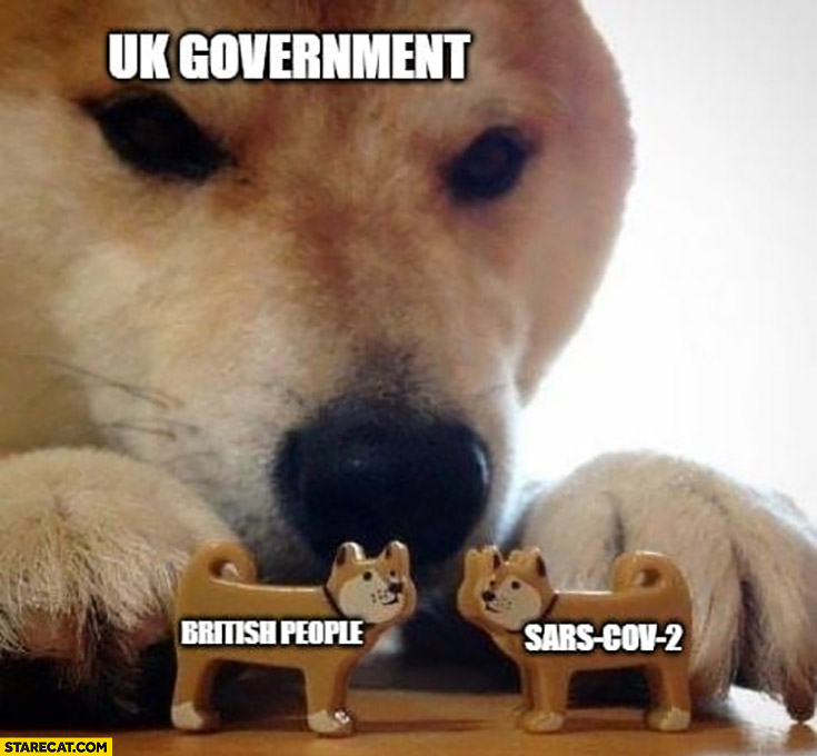 Uk Government British People Coronavirus Doge Dog Now Kiss Meme Starecat Com