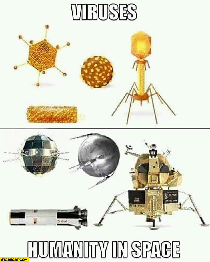 Viruses vs humanity in space comparison looking the same